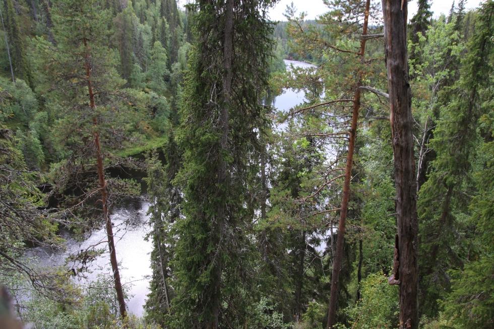 Oulanka_Savinajoki Rupakiven alapuolella_22.8.2008_Raimo Rajamäki 003